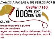 Sacamos a caminar a tus perros