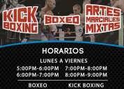 Kick boxing artes marciales mixtas