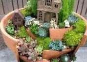 Mini jardines con plantas naturales