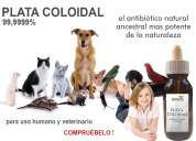 Plata coloidal - 60ml - 10ppm