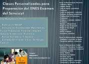 Clases personalizadas para rendir el examen del senescyt enes