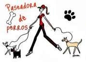 Paseos personalizados paseadora de perros
