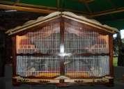 Hermosas jaulitas de madera para pajaritos