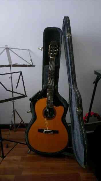 Vendo Hermosa guitarra. Chet Atkins