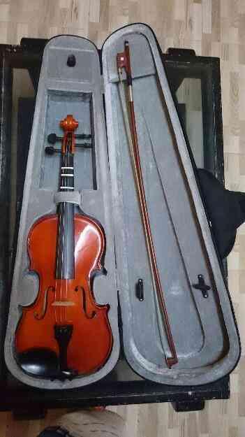 Vendo Violin con estuche