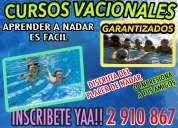 Cursos vacacionales de natacion