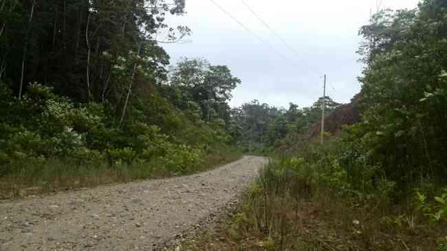 Vendo hermosa finca de 42 hectáreas  en la provincia de napo 0968939513