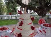 Pasteles y tortas para toda ocasión: matrimonios, bautizos, etc.