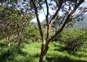 Precioso terreno en venta en la via a las cascadas.
