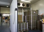 Termometros laser nuevos de paquete para la industria y el hogar
