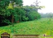Invierte en la segunda etapa de lotes en ambiente natural en provvidenza