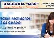 AsesorÍa y consultoria en proyectos de inversiÓn, tesis de grado