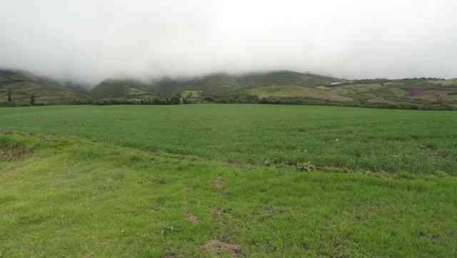 Se vende 20 hectáreas en Cotacachi en el sector de Quiroga por Morochos