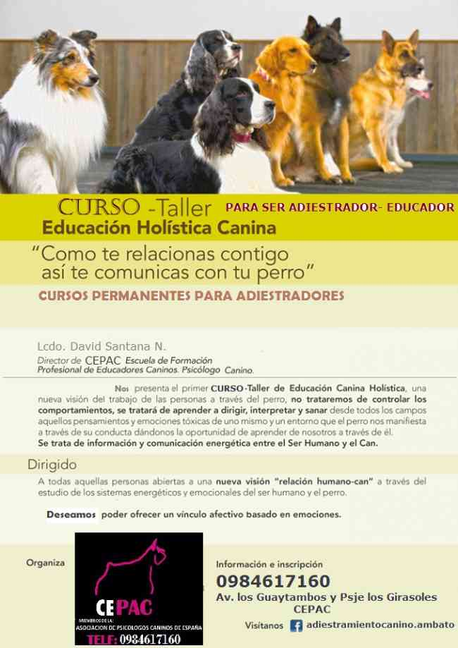 CURSO PARA SER ADIESTRADOR EDUCADOR CANINO
