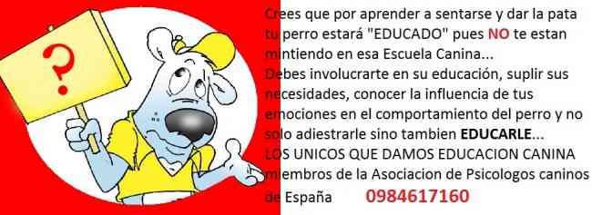 EDUCACION CANINA PARA CACHORROS Y ADULTOS