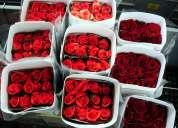 Venta de rosas