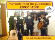 En todo machachi  ahora 0983131388 whatsapp mariachi rosa de guadalupe