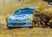 Excelente auto de rally