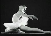 Oportunidad! ballet clasico