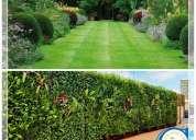 DiseÑo de jardines - virtual
