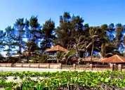 Se alquila hermosa propiedad en playas