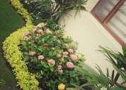 Empresa de jardinería en guayaquil