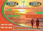 Paseos, viajes y turismo estudiantil (escuelas y colegios)