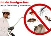 022424653 control de plagas, fumigación, desratización, control de aves 0988994732