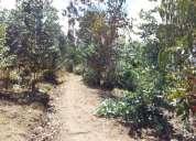 Se vende 12 hectáreas de bosques  en cotacachi