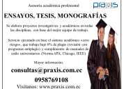 Desarrollo de tesis, monografías, ensayos y guías