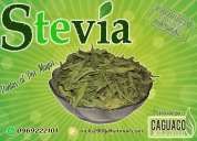 Stevia hoja 100% natural (450 gramos * 4,10 usd)