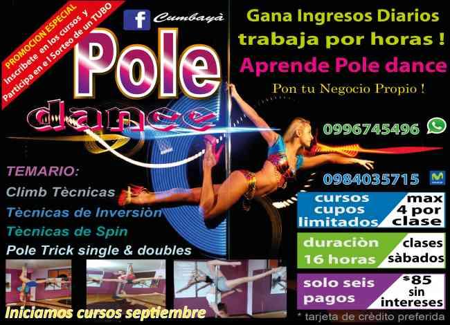 CURSOS PARA DAR CLASES DE POLE DANCE