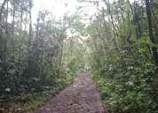 Finca de 12 hectáreas en macas