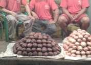 Se vende papa chola de calidad 0990917939 guayaquil ecuador