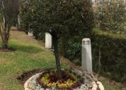 En campo santo monte olivo, contactarse.