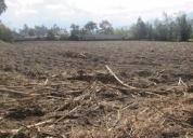 Vendo terreno en cotacachi