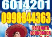 mariachis de quito  serenatas desde $35 show garantizado ! whatsapp 0983414282