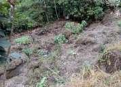 De oportunidad finca 3 hectareas pasaje el oro