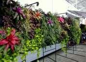 Jardines verticales o ecosistemas