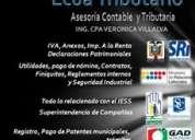 Asesoria tributaria, declaraciones, anexos y devoluciones, patentes, impuestos, contabilidad