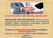 Abogados consulta en linea gratis