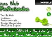 DiseÑo de paginas web profesionales visualg3