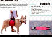 Camillas,arnes terapeuticos y fajas antigoteos para perros
