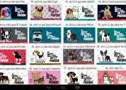 Articulos de fiesta para perros huesos, gorros, banner, bases para cupcakes, etc