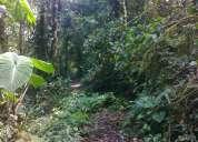 Terreno 5 hectarias en oriente ecuador