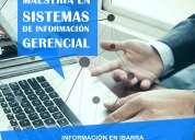 MaestrÍa en sistemas de informaciÓn gerencial