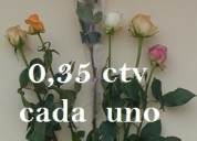 Us$ 0,35 una rosa con capuchón us$ 0,35 c/u bouquet de 1 rosa