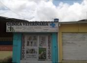 ClÍnica veterinaria mr. dog