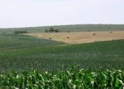 Compra y venta de terrenos agricolas