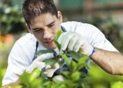 Servicios de jardineria en general - exporlider s.a.